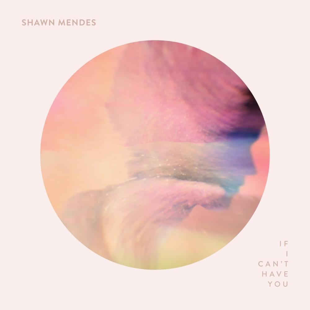 ترجمه آهنگ If I Cant Have You از Shawn Mendes